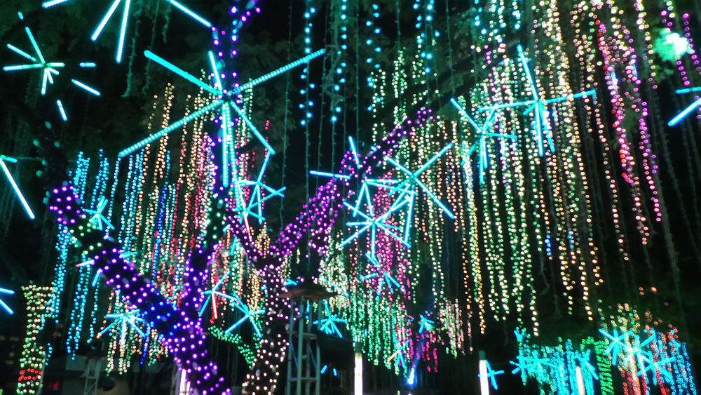 Ayala Triangle Lights and Sounds Show (12)