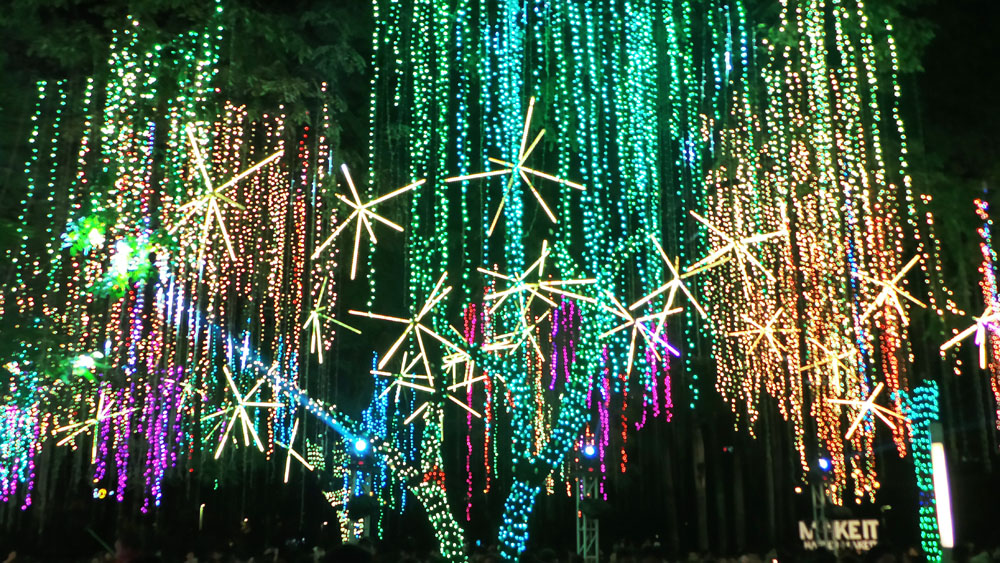 Ayala Triangle Lights and Sounds Show (8)