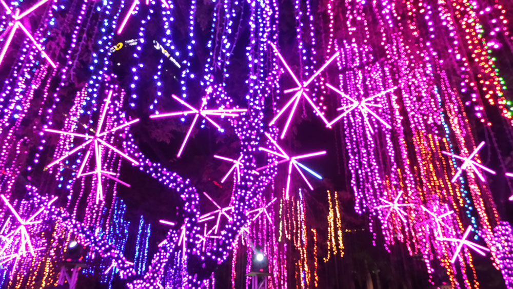 Ayala Triangle Lights and Sounds Show (9)